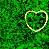 SNAP Heart In Clover