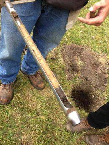 Figure 7. Onsite soil cores.