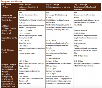 FIGURE 1: the outline program for the Elders' Voices Summit