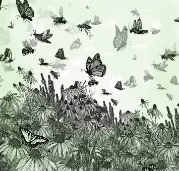 From Prairie to Desert, Pollinator Triptych, part 1